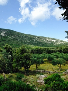 Camping Lopari Berg